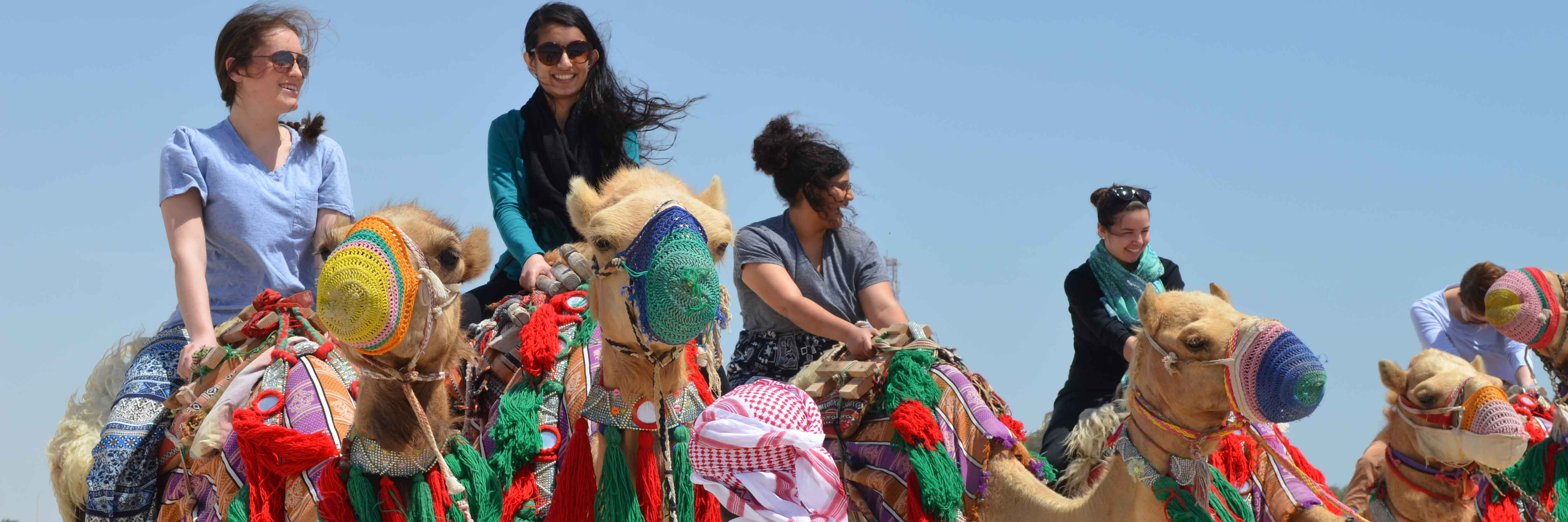 Students riding camels in Qatar