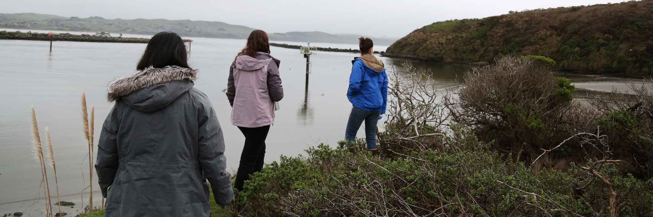Students hike behind a researcher on the rocky shoreline at Bodega Bay, California