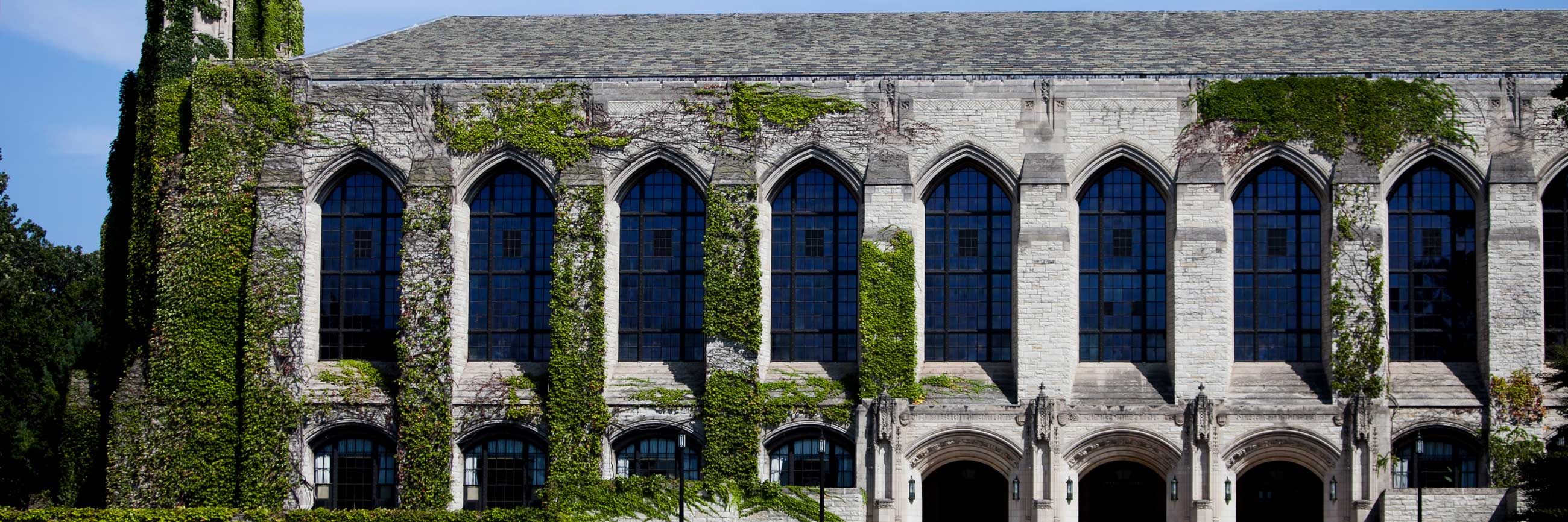 Evanston campus Deering Library covered in ivy.