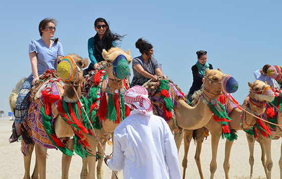 Group photo of students sitting on camels